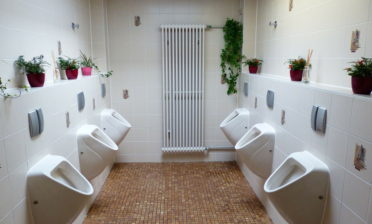 Atascos en el WC